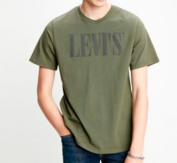 Levis - Relaxed graphic tee / Grønn