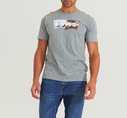 Levis Housemark graphic tee / Grey
